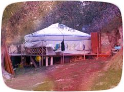 yurta del mattino