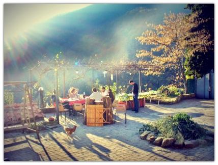 pranzo giardino ciricea