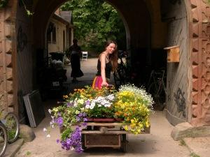 Tonndorf_flowers arrival